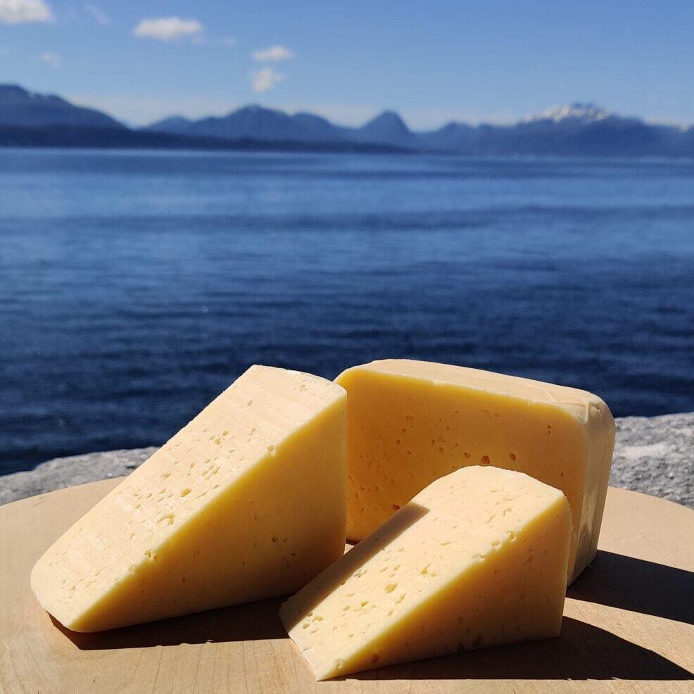 Ost fra Molde fra Fonte Verdi Ysteri